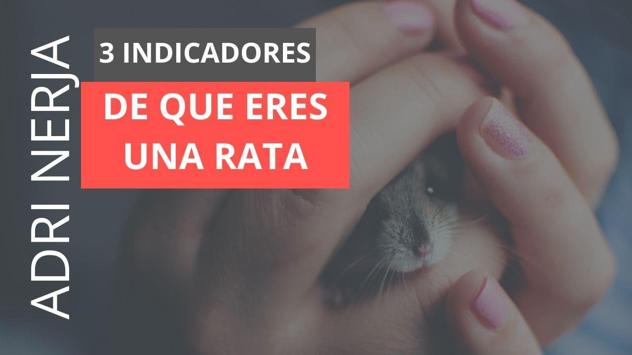 la carrera de la rata: qué es